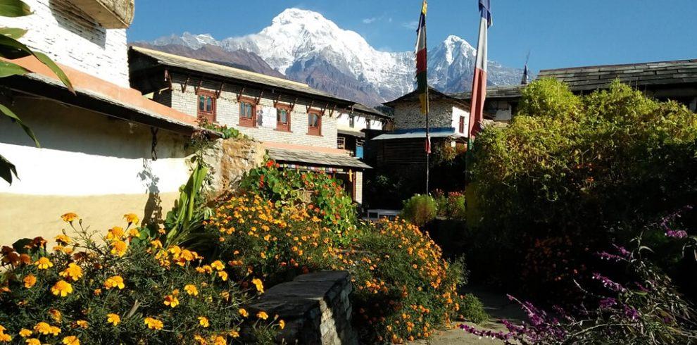 Annapurna View from Ghandruk